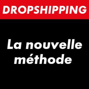 dropizi dropshipping avis